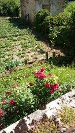 Arbois cute garden