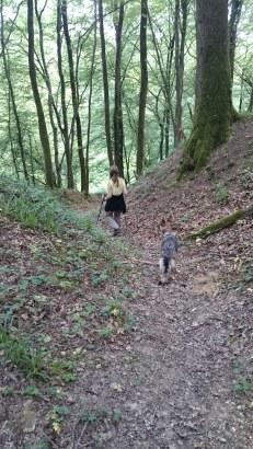Sentier Des Radeliers Trail